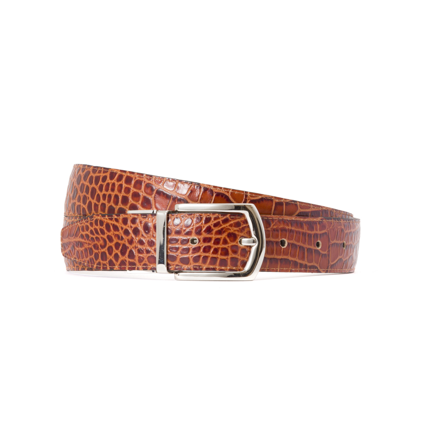 Reversible Belt AS02