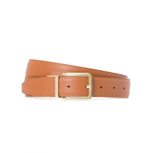 &Reversible Belt BG01;